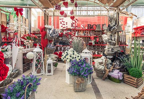 floricoltura-michielin-servizi-garden-accessori-per-la-casa