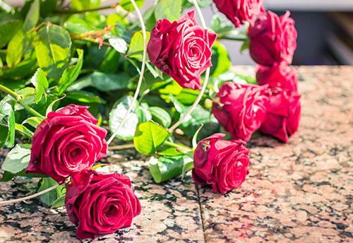 floricoltura-michielin-servizi-garden-consegna-a-domicilio