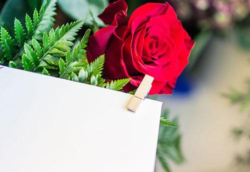 floricoltura-michielin-servizi-garden-eventi